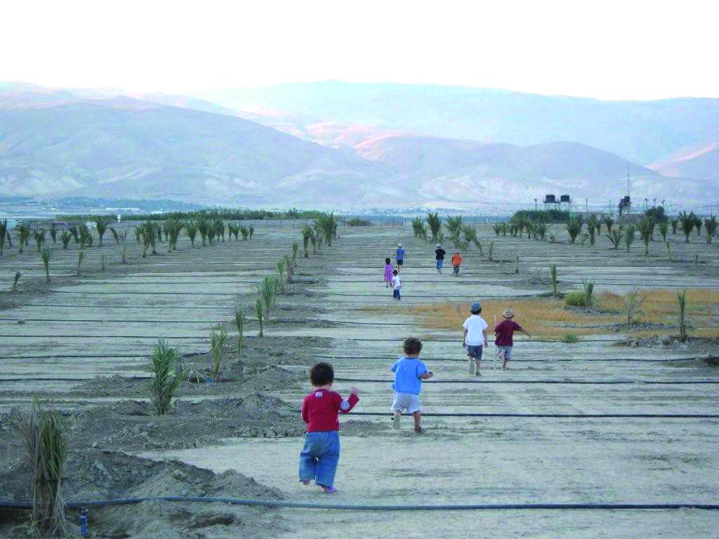 """יום גוש קטיף במערכת החינוך   תשפ""""א – 2021"""